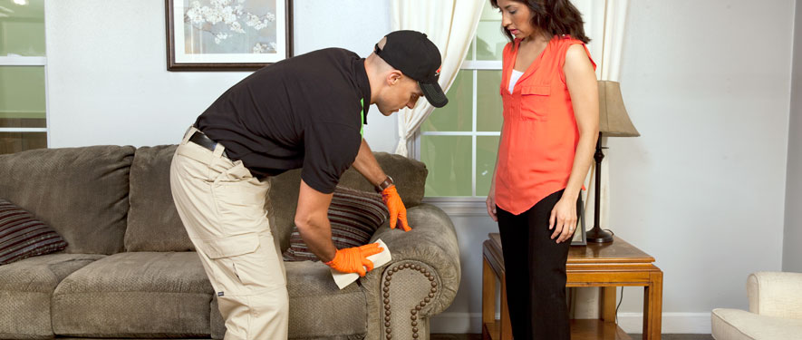 Galveston, TX carpet upholstery cleaning